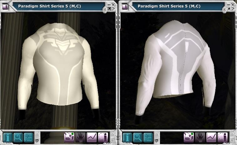 Paradigm Shirt Series 5 (M,C).jpg